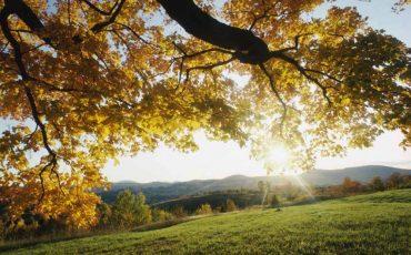 Manfaat Sinar Matahari Untuk Kesehatan